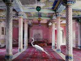 VII Premio Bienal Internacional de Fotografía Pilar Citoler