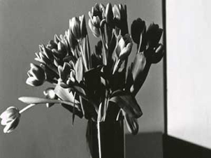 Mapplethorpe se muda a L.A.