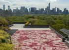 Sangre en el tejado del MET